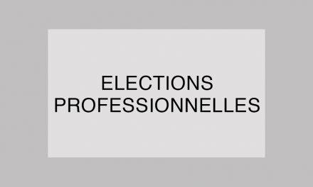 Recours au vote électronique