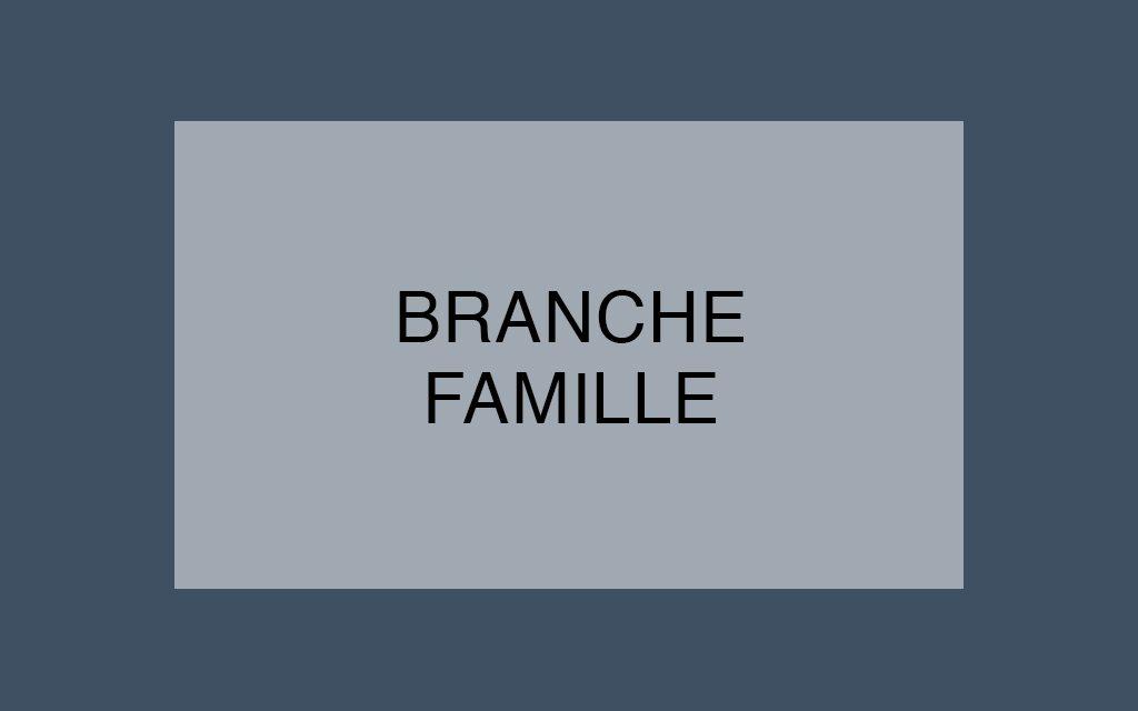 La Branche Famille dans la tourmente