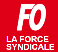 Formation des militants syndicaux – Mise en place du stage CSE